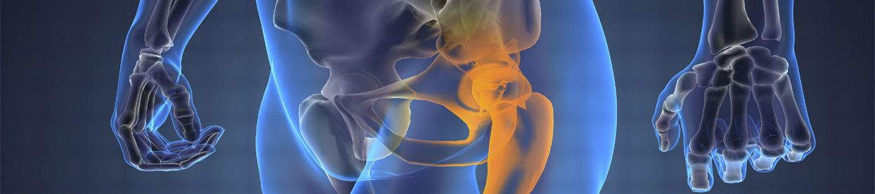 Hip Arthroscopy Brighton MI